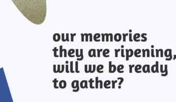 Memorie copy